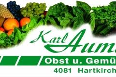 Logo-Firma-Karl-Aumayr-e.U-4081-Hartkirchen_1920x1080_300dpi1-1