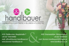 handlbauer-1